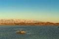 أمر غاية في الغرابة والحيرة... ظهور بحيرة زرقاء في وسط الصحراء الإماراتية