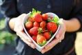 الأطعمة التي تمنحك الصحة والسعادة
