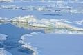 صحيفة الغارديان البريطانية تتألق في الكذب حول الجليد في القطب الشمالي.. ...تفضل وشاهد حجم ...