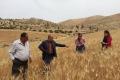 مُناصِر الزراعة العضوية الدكتور عبد الغني حمدان في حوار مع مجلة آفاق