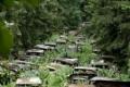 بالصور : مقبرة السيارات في إحدى غابات بلجيكا !