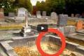 فيديو | ذهب لزيارة قبر زوجته.. ليتفاجأ بشيء مرعب