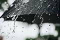 ما هو مصدر الرائحة المألوفة للمطر؟؟؟