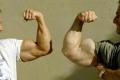 ما هي أقوى عضلة في جسم الإنسان؟
