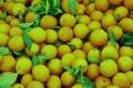 10 أطعمة صحية نتناولها في الوقت الخطأ خلال اليوم: البرتقال خطر في هذه الساعة