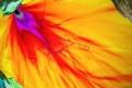 دراسة حديثة تكشف أسباب تسونامي اليابان 2011