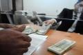 13 جنيها للدولار بمصر وخسائر 40% بـ2016 .. ماذا بعد؟