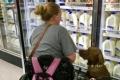 سيدة تدرِّب كلبها لينقذها من نوبات الصرع.. أثبت وفاءَه كصديق!