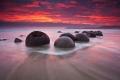 سحر الكون يتجلى بيد الخالق... بالصور.. صخور المويراكي الغريبة والغامضة!!