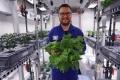 من دون تربة.. زراعة ناجحة لخضراوات بالقارة القطبية