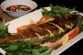 الأسماك.. بعضها مُفيد والآخر يزيد مخاطر أمراض القلب