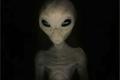 سياسي بريطاني يفجر قنبلة ويقول أنه أنجب طفلاً أخضراً من مخلوقة فضائية!!