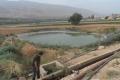 تواصل ري المحاصيل في الأغوار الوسطى بالمياه العادمة غير المعالجة دون حسيب أو رقيب