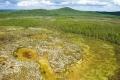 معلومات جديدة حول النيزك الذي نسف ملايين الأشجار في سيبيريا