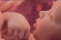 ماذا يتذكر الجنين من حياته في رحم أمه ؟