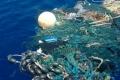 مصائب كائنات عند أخرى فوائدُ.. القمامة في المحيطات تفتك بإلأسماك وتفيد الحشرات