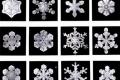 معلومات غريبة عن الثلج