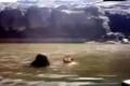 بالفيديو... عروسان يمنيان يغرقان في مشهد أبكى الملايين