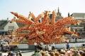 موكب الزهور : من أجمل العروض السنوية التي تقام في هولندا