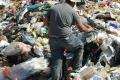 عمال النظافة يحملون وزر الحفاظ على البيئة لوحدهم، والنتيجة تعرضهم للعديد من الأمراض
