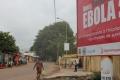 """العلماء يكتشفون مصدر فيروس """"ايبولا"""""""