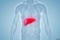 طريقة منزلية بسيطة لتخليص الكبد من السموم!