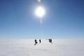 أنتاركتيكا تجاوزت حاجز الـ20 درجة مئوية.. ماذا يعني ذلك؟