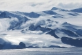 """التغير المناخي قد يحول القارة المتجمدة """"أنتاركتيكا"""" إلى أرض خضراء"""