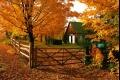 فصل الخريف يبدأ السبت القادم ويستمر 89يوم و20ساعة و21 دقيقة بمشيئة الله تعالى.