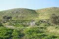 تل الحمة...طبيعة فلسطينية تجذبك لزيارتها