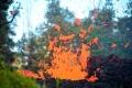 زلازل متكررة تضرب ولاية هاواي بعد ثوران أنشط براكين العالم