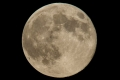 """ظهور """"القمر العملاق"""" أواخر العام الحالي"""