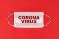 العلاج بداخلك.. كيف تعمل المناعة على مكافحة فيروس كورونا؟