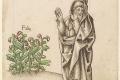 فيثاغورس.. عالم رياضيات قدّس الأرقام وقتلته الفاصولياء