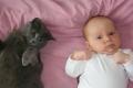 الطفيليات التي تعيش في القطط تحول الأطفال الى حمقى
