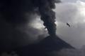 هروب جماعي للسكان من بركان جمالاما