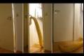 بالفيديو.. حية عملاقة تفتح أبواب المنزل المغلقة