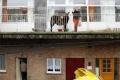 حمار في شرفة المركز الثقافي العربي يسبب أزمة بلجيكا