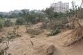 التصحر يغزو قطاع غزة ومخاوف من تحوله إلى منطقة جرداء بلا خضرة