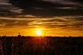 بعد مساء ماطر بغزارة وليلة قارسة البرودة ..الأفق يبشر بالمزيد من الخيرات بمشيئة الله !