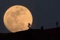 بعد 50 عاما.. تحول تاريخي برحلات السفر إلى القمر