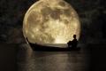 الاثنين القادم - أضخم قمر منذ 70 عام يظهر في سماء فلسطين