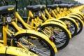 دراجات هوائية تشاركية.. موضة صينية جديدة لتفادي الزحام