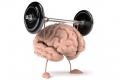 "كيف تُنشط ""رام"" المخ ؟!"