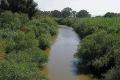 شهادة وفاة نهر الأردن