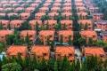 أغنى قرية في الصين جميع سكانها أثرياء، و إن خرجوا منها يفقدون كل شيء!
