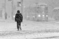 الملابس الفاتحة تقلل خطر الحوادث في الشتاء