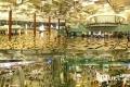 """مطار """"تشانغي"""" بسنغافورة الأفضل في العالم للعام السادس على التوالي"""