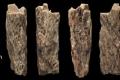 فتاة ذات 13 عامًا ماتت منذ أكثر من 50000 عام.. لكنها كانت مميزةً جدًا