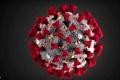 فيروس كورونا.. أحدث التطورات وأبرز الحقائق لحظة بلحظة